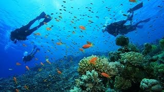 pulau tioman eat dive sleep and snorkeling