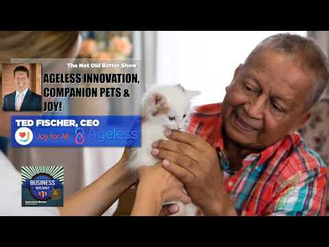 236 Ted Fischer - Hasbro to Ageless Innovation - YouTube