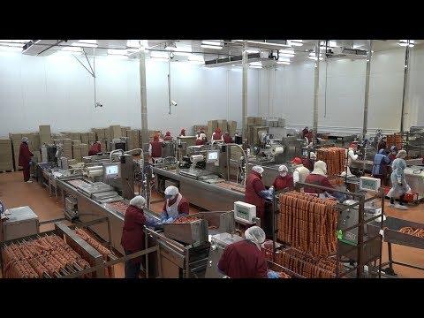 Глава Администрации города Ростова-на-Дону  посетил «Ростовский колбасный завод – «Тавр».