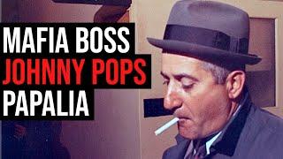 """The Enforcer"" — Mafia Boss Johnny 'Pops' Papalia"