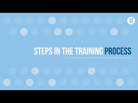 Steps In The Training Process