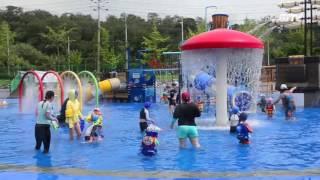 [진은조 기자] 야외수영장에서 시원한 여름을 보내세요_안산드림TV