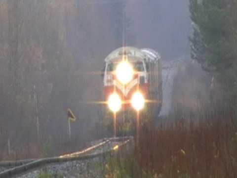 Finnish freight train 3365 passed Eerola level crossing