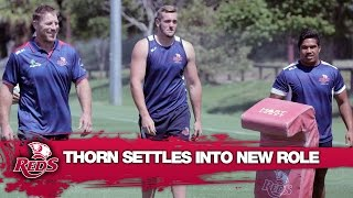 Brad Thorn settles into coaching life with the Reds | Rugby Video Highlights