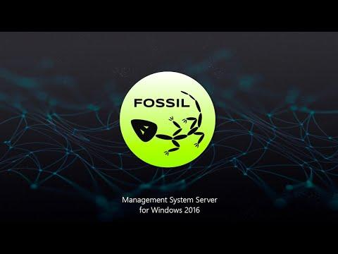 fossil-management-system-server-for-windows-2016-on-azure