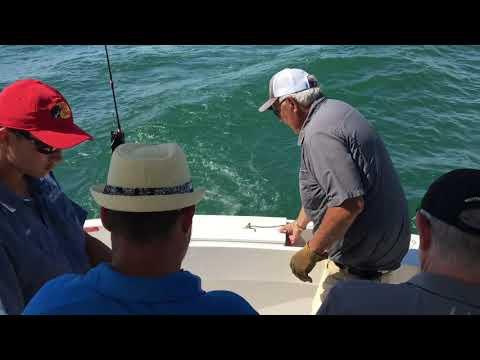 GONE FISHING!!!!!! LAKE ERIE CHARTER