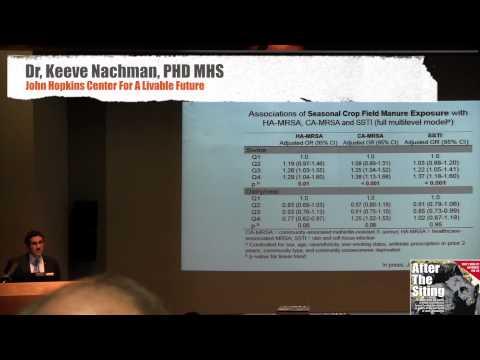 Dr Keeve Nachman