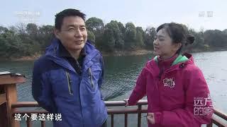 [远方的家]最美是家乡——江西 春游花源谷 醉美西海边| CCTV中文国际 - YouTube
