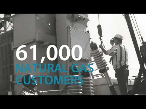 Celebrating 100 years of Energy Services