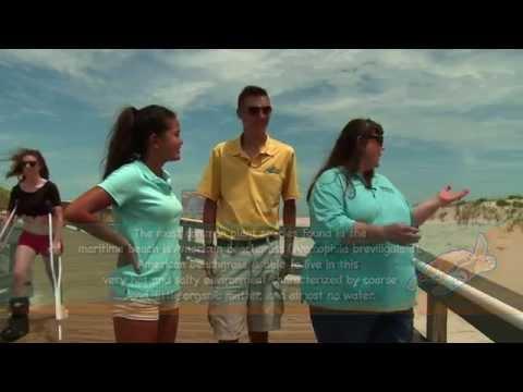 Aqua Kids  2014 09 Island Beach  State Park  Maritime Forest