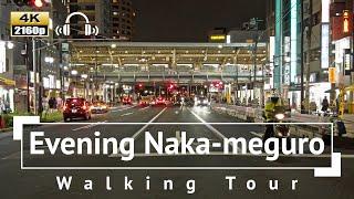 [4K/Binaural Audio] Evening Nakameguro Walking Tour  Tokyo Japan