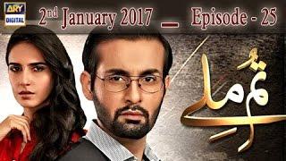 Tum Milay Ep 25 - 2nd January 2017 - ARY Digital Drama