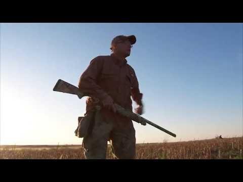 Southwest OK Dove Hunting
