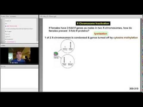 USMLE Step 1 Classroom Anywhere Preview: Biochemistry with Dr  Sam Turco