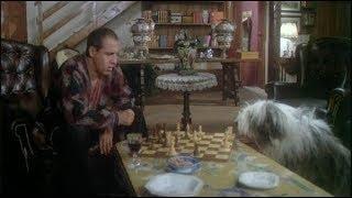 Катка на lichess.org#55 Шахматы. Прямой эфир