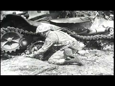 Loss of life during Battle of Tarawa, World War II. HD Stock Footage