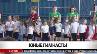 Соревнования «Юный гимнаст» прошли в Бобруйске
