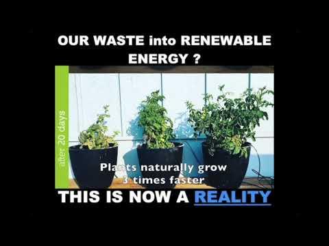 Waste into Renewable Energy