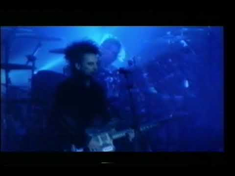 The Cure - Pictures Of You (Live 1992)
