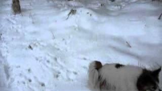 初めての 雪遊びです.