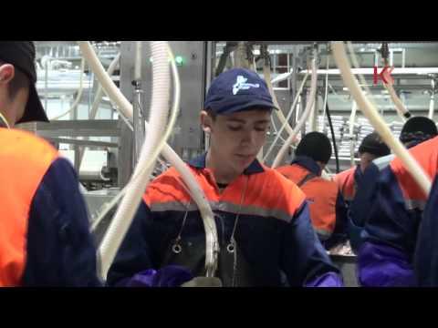 Как в селе Ивашка студенты деньги на рыбе зарабатывали