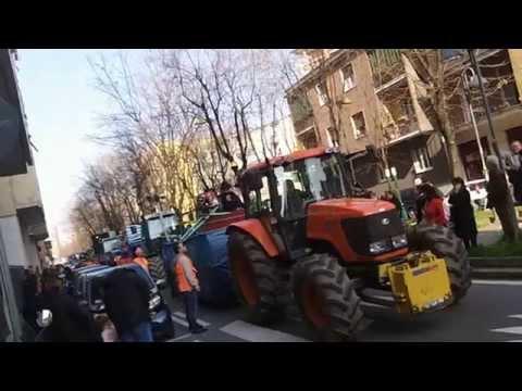 sesto san giovanni carnevale 2014 [VIDEO UFFICIALE]