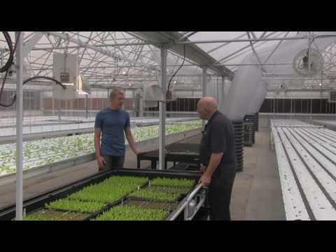 GeoThermal Heating and Cooling in Aquaponics