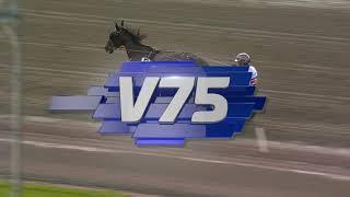 Vidéo de la course PMU PRIX STO-SM SPONSORED BY ZET STALLIONS