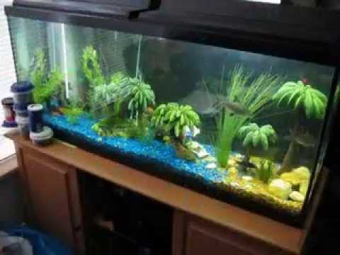 Creative diy fish tank decor ideas youtube for Aquarium decoration ideas