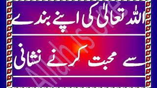 Allah ki apny bandy se mohabat krny ki nishani