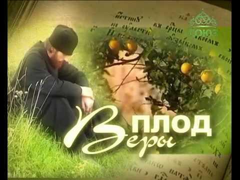 """Плод веры. Программа телеканала """"Союз"""" от 10 декабря …"""
