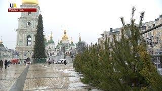 У Києві встановили головну новорічну ялинку країни