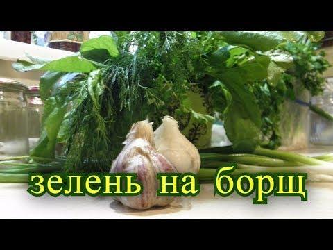 Заготовки. Щавель на зиму, Зелень на борщ, Щавельный суп.