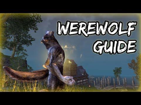 How To Become A Werewolf In Elder Scrolls Online