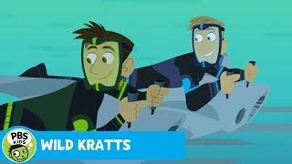 Wild Kratts: Marlin Challenge thumbnail