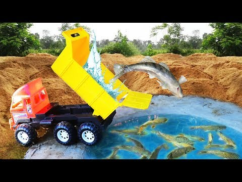 Learn Sea Animal  Names Education | New Home Animal | Truck | Construction Vehicles For Kids