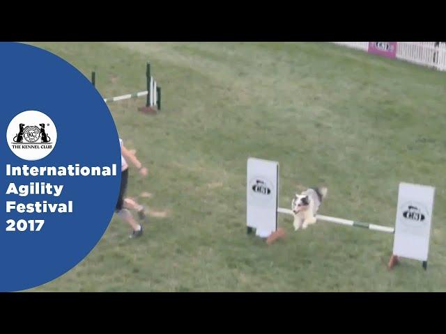 Nations Cup Final Medium - Part 2 | International Agility Festival 2017