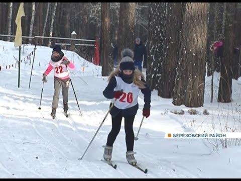 Дети со всего Красноярского края стали участниками соревнований «школьной спортивной лиги»
