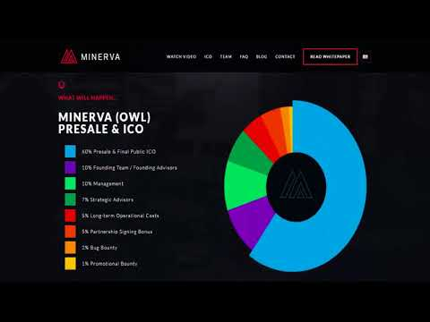 Minerva is the world's first reverse merchant processor