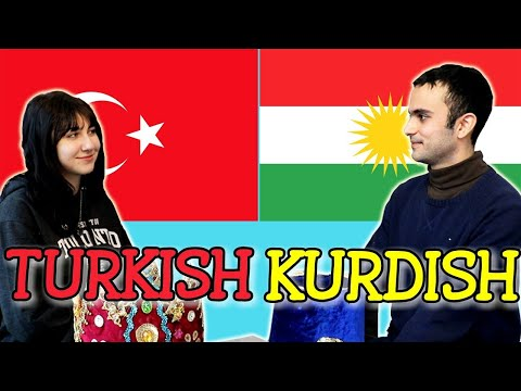 Similarities Between Turkish and Kurdish