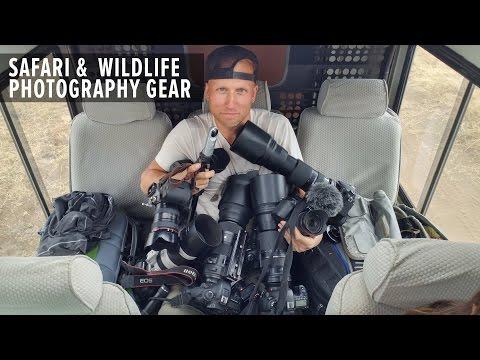 Photography Gear Recommendations for Wildlife/Safari