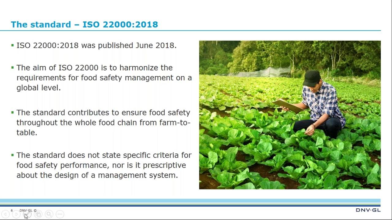 iso 22000 version 2018 pdf francais