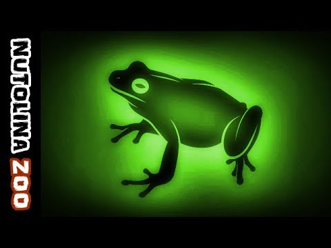 Frog croaking / Frog sound effect / Animal sounds frogs