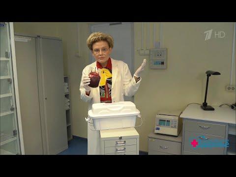 Стволовые клетки против рака крови. Здоровье.  20.09.2020