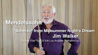 Мастер класс Джима Уолкера, США, оркестровые трудности для флейты