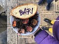 Seafood market in Bari, Italy