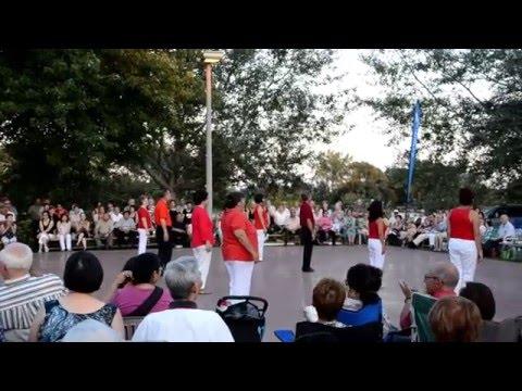 Festival de danse en ligne au parc des rapide 2014
