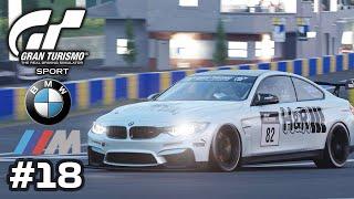 GRAN TURISMO SPORT - 15 Laps Endurance Race - BMW M4 - Gameplay - Part 18