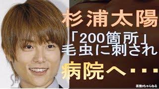 【関連動画】 杉浦太陽、妻・辻希美の料理の手際よさを絶賛!30分で9皿を...