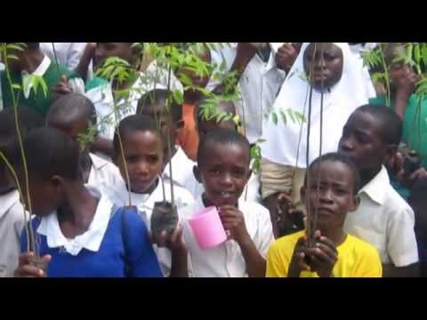 Jane Goodall's Roots & Shoots - Traditional Medicine and Forest Conservation in Western Tanzania